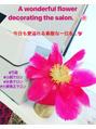 サロンを飾る芍薬(^^)良い一日をお過ごしください♪