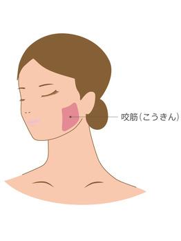 〔頬のコリ、咬筋のコリ〕お顔の浮腫を改善☆_20210419_2