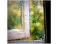 パールプラス 足利店(Pearl plus)雨の日の肌