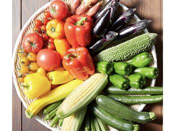 夏野菜の効果!_20210725_1
