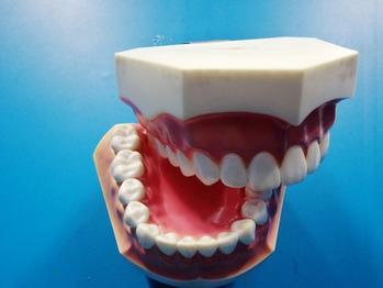 顎関節の違和感や痛みを解消する《顎関節クリア整体》_20210712_2
