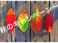 秋痩せキャンペーン