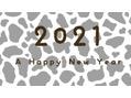 新年のご挨拶ヽ(^0^)ノ