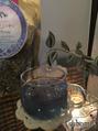 ブルーのハーブティー☆見た目も涼しく美味しい美容茶