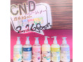 CND 大セール!