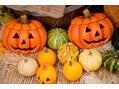 Halloween目前♪♪