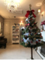 クリスマスツリ~とハーブボール☆今週のハーブは?