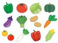 旬の野菜を摂ろう!