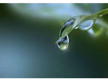 雨上がりの湿度_20200926_1