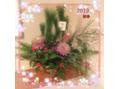 遅ればせながら新年のご挨拶とお知らせですm(_ _)m