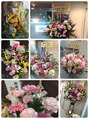 2015年4月25日  Belle京橋店オープン