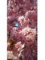 河津桜に癒されて…