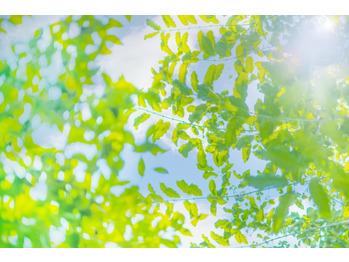 自然のギフト★エネルギーチャージ_20210223_1