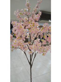 桜~発見!【えぴえぴ脱毛】_20210210_1