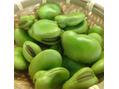 6月の旬の野菜 ~そら豆の美容効果~