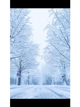 雪でも_20180112_1