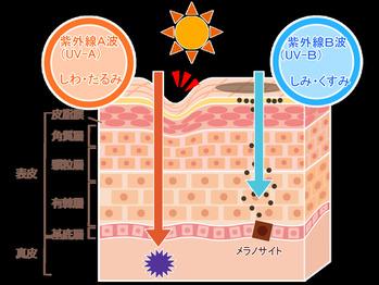 紫外線対策できていますか?_20190416_1