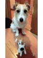 「本八幡店」愛犬!あるキャラクターコラボ写真☆
