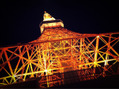 TOKYO TOWERとワンカラー
