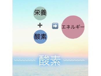 ☆ Newクーポン 3~ ☆_20210424_2