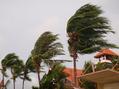 △注意△台風が接近しております!
