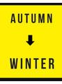 秋→冬のまつげ