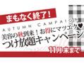 秋キャンペーンラスト1日!!