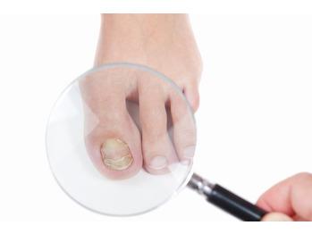 爪は健康状態を表している!?_20210620_1