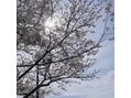 明日の予約状況【3/29(月)】