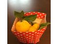 12/22 冬至です!柚子湯です!