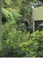 スリランカで。