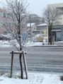 雪景色~!