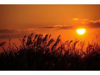 季節の変わり目の今◆セルフケア_20210825_1