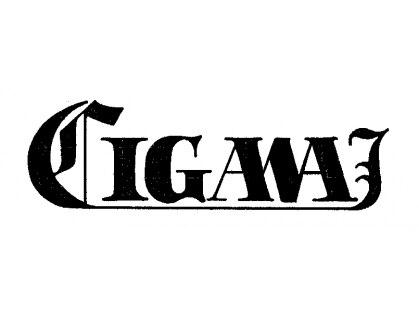 コモワイズイガワ(Como Y's IGAWA)の写真
