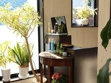 ヘアーリレーションの雰囲気(自然光と植物が溢れる、リラックスできる店内。府中駅から3駅)