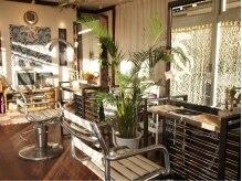 オアフ(Oahu)の雰囲気(観葉植物や熱帯魚。。自然が多く温かみのある店内です)