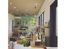 ヘア アトリエ プルトア(hair atelier Pourtoi)の雰囲気(店内には明るく日差しが差し込みます♪)
