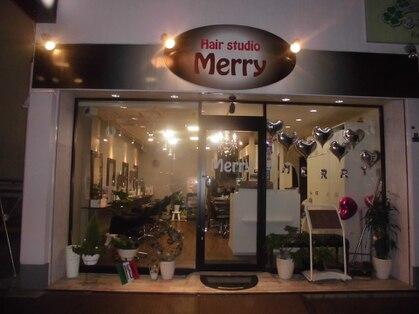 メリー(Merry)の写真