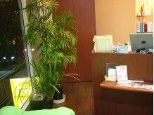 ヘアースペース クリー(hair space CREW)の雰囲気(店内の至るところに緑が置いてあるのも、落ち着きます。)