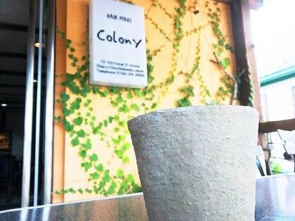 ヘアーメイクコロニー(Colony)