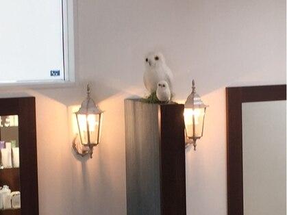 美容室ハナコ 川元店(Hanako)の写真