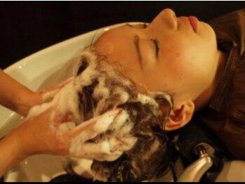 ココニベンテ(552vente)の写真/頭皮や毛髪のバランスを整える《COTAヘッドスパエヴァーリーフ》自然界の栄養をたっぷり含み極上の癒しを◎