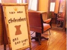 ヘアーメイク チワワ(hair make chihuahua)