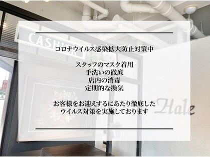 Hale本店 【ハーレ】