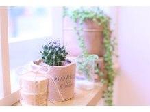 シュエット(chouette)の雰囲気(ナチュラルな雑貨や植物でお出迎え♪AM9:00から営業中!)