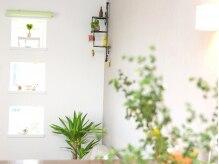 リラックスアンドヘアサロン リモ(Relax&Hair Salon Rimo)の雰囲気(緑いっぱいのオシャレな空間♪♪)