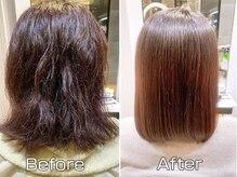サルビア(Salvia)の雰囲気(髪質改善酸熱トリートメント「資生堂サブリミック」で美髪エステ)