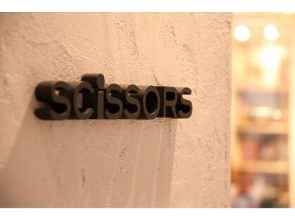 シザーズ(scissors)の写真