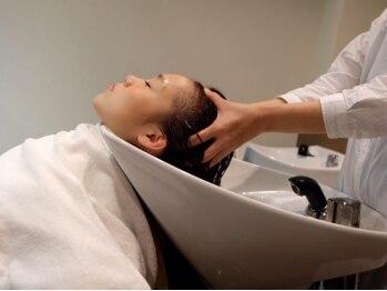 ドレス(Dress)の写真/専門知識を有するSTAFFのSPAで癒されキレイになれる。髪のコンディションを整えて、リフレッシュにも効果的