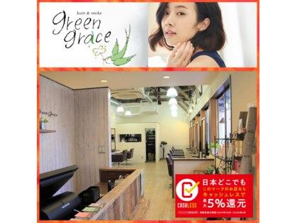 グリーングラス(green grace)の写真